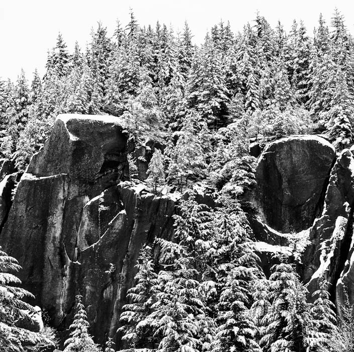 Snow covered trees and rock faces