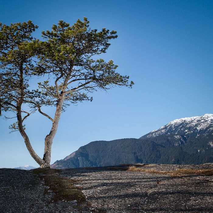 Squamish scenery