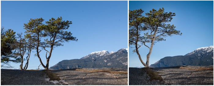 Before+after scenic shot